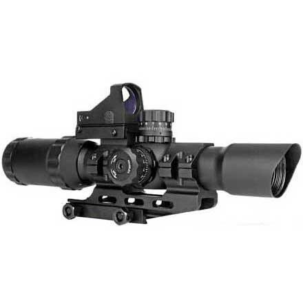 Image for Assault Scope Combo 1-4x28mm w/P4 Sniper Reticle and Micro Red Dot
