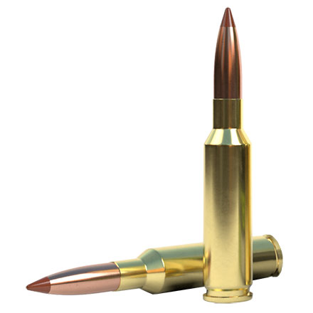 6.5 Creedmoor 140 Grain Ballistic Tip 200 Round Case (10 Boxes of 20 Rounds)