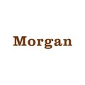 MORGAN ADJUSTABLE PADS